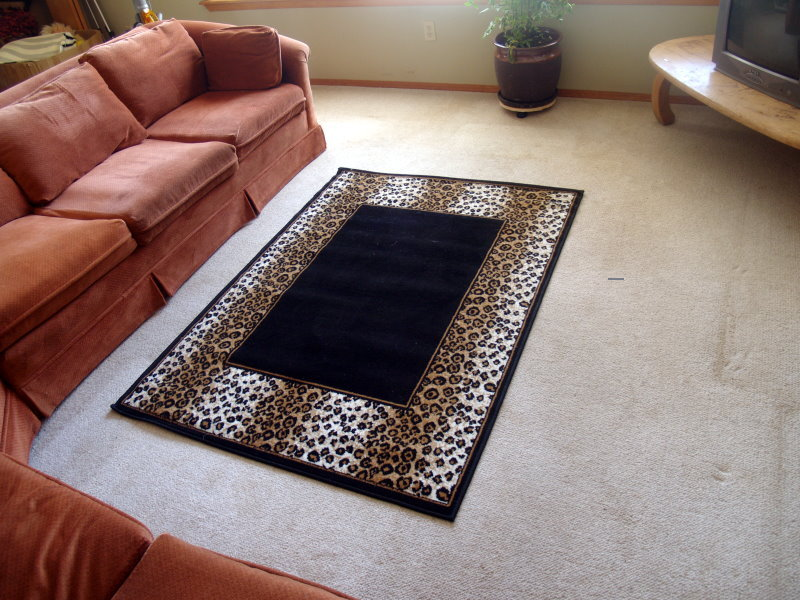 Leopard Print Border Area Rug on Black 5ft x 8ft
