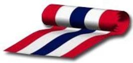36x15 yards patriotic bunting 9869 thumb200