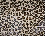 Jaguar 4  18783 thumb155 crop