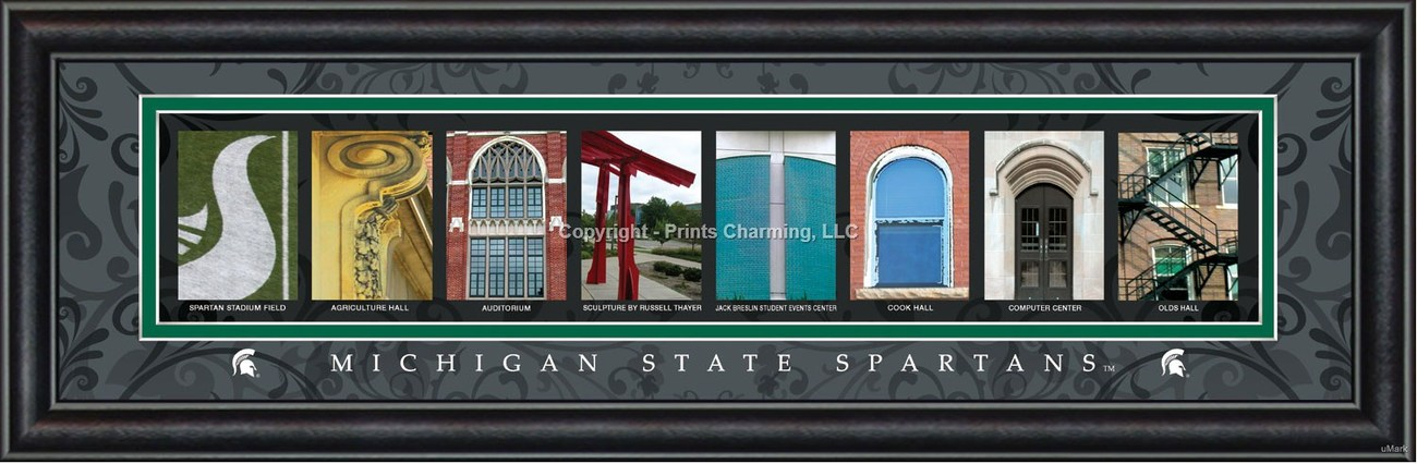 Michigan State University Officially Licensed Framed Letter Art 2 Versions