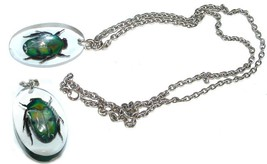 EXOTIC REAL BEETLE SCARAB IN LUCITE NECKLACE GOOD LUCK AMULET - $34.99
