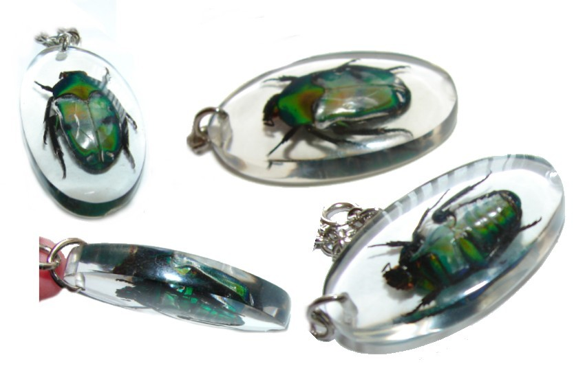 EXOTIC REAL BEETLE SCARAB IN LUCITE NECKLACE GOOD LUCK AMULET