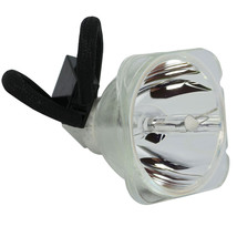 Sharp AN-K30LP/1 Phoenix Projector Bare Lamp - $90.00