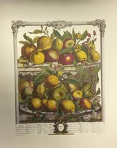 Fruits of the Month (April) By Furber - $50.00