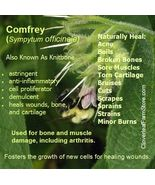 Comfrey Leaf Organic DRIED HERB - $3.29