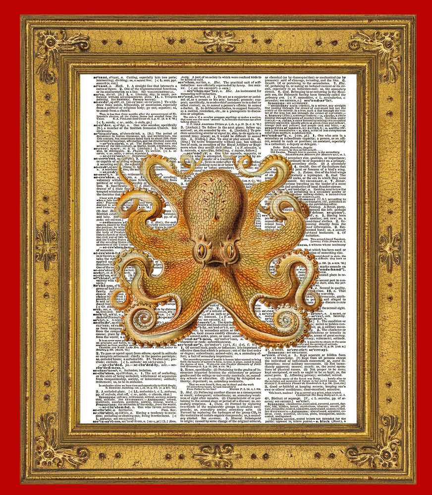 Large Fanciful OCTOPUS Color Dictionary Art Print No. 0060