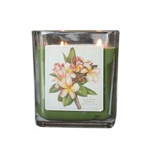 Sunkissed Plumeria Hand Poured Verdure Gift Boxed Soy Candle USA made