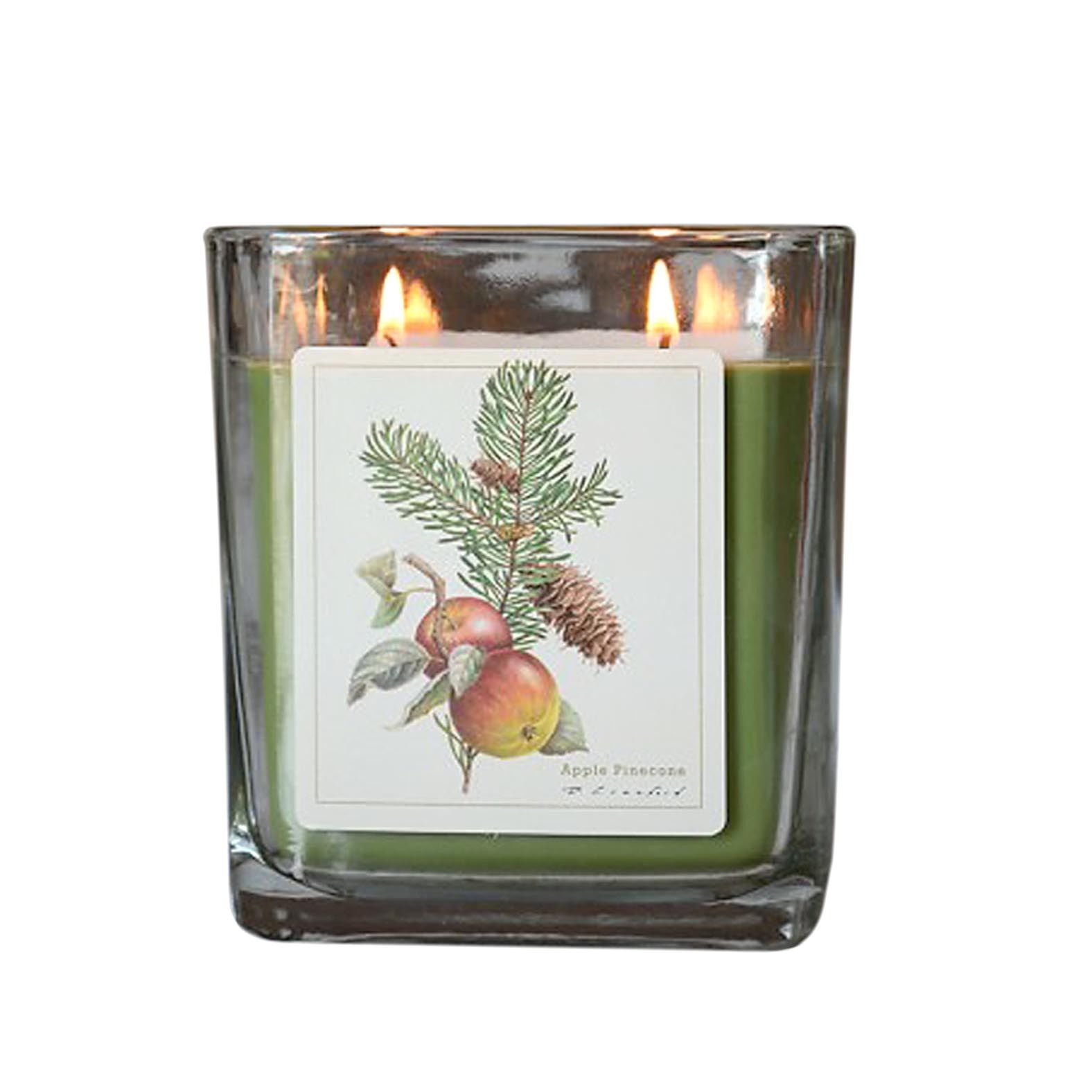 Apple Pinecone Hand Poured Verdure Gift Boxed Soy Candle USA made