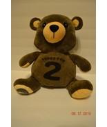 Teddy For 2 Stuffed Plush Bear Theodore Roosevelt Association Share  - $28.74