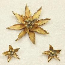 Vintage JAPAN BROOCH & EARRINGS Set Golden Star Flower Inset Design CLIP ON - $23.38