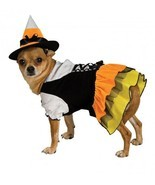 Candy Corn Witch Dog Costume - £15.08 GBP+