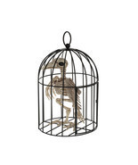 Crazy Bonez Skeleton Crow Raven in Cage Bird Halloween Prop Decoration New - $37.29