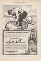1909 Anheuser-Busch St Louis MO Ad: Live Giving American Barley Malt-Nut... - $8.86