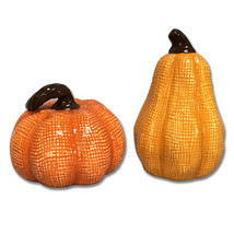 Pumpkin Gourd Salt and Pepper Shakers Thanksgiving Fall Autumn Harvest H... - $13.99