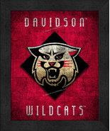 "Davidson Wildcats ""Retro College Logo Map"" 13x16 Framed Print  - $39.95"