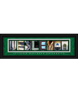 Illinois Wesleyan University Titans Officially ... - $39.45