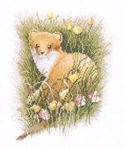 Kit embroidery cross Heritage. 294JSST Stoat Size 24/19 cm. - $30.00
