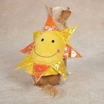 Zack & Zoey Happy day Dog Halloween Costume - Small - $34.95