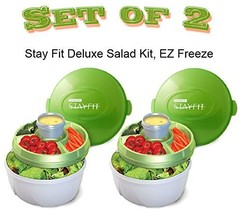 Food Storage Container Stay Fit Deluxe Salad Kit EZ Freeze Cool Gear Sta... - £17.20 GBP