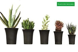 Circa Garden 5 Pack Multiple Size Black Plastic Planter Pots for Indoor ... - $235,92 MXN