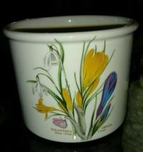 Portmeirion Botanic Garden Galanthus Crocus Lar... - $18.68