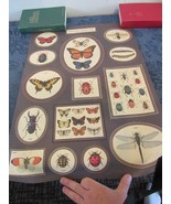 19th C Insect Plate- Histoire Naturelle Serie Insectes Reproduction Poster - $28.76