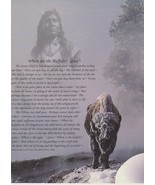 Buffalo Spirit Seattle Vintage 16X20 Color Native American Memorabilia P... - $29.95