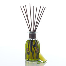 Pier 1 Imports concentrated Reed Diffuser Set Citrus Cilantro™ Reed Diff... - $664,01 MXN