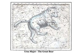 Ursa Major - The Great Bear by Alexander Jamieson - Art Print - $19.99+