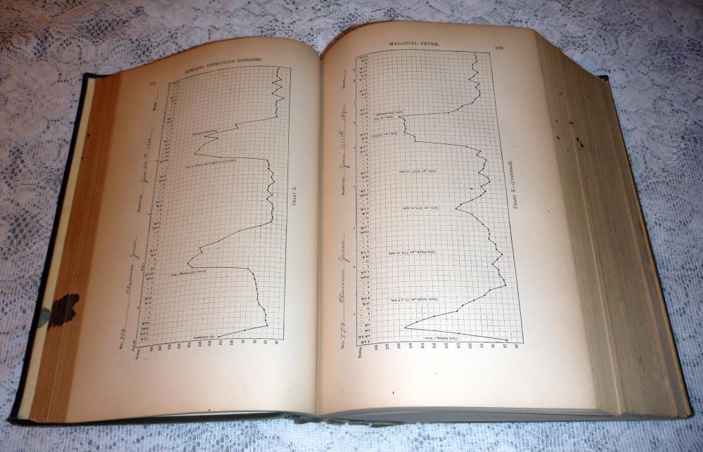 Principles and Practice of Medicine, 1897 HC - William Osler, M.D.