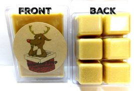 Reindeer Poop 3.2 Ounce Wax Tarts - Scent Brick, Wickless Candle - €3,08 EUR