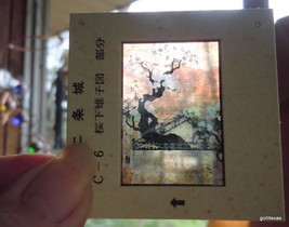 Vintage Set of 10 Slides in Folder Vintage NIJO Castle Paintings - $18.40