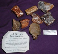 Arizona PETRIFIED WOOD pieces approx 1 lb - $9.99