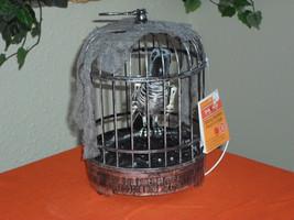 Halloween Animated Talking Skeleton Parrot in Cage - LED Lights - €35,33 EUR