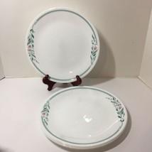 """4 Dinner Plates Rosemarie Corelle 10.25"""" Pink Flowers Green Leaves - $19.34"""