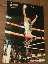 "WWE Slam Crate Exclusive Like A Boss Daniel Bryan 16"" X 24"" Poster, Bobb... - $7.25"