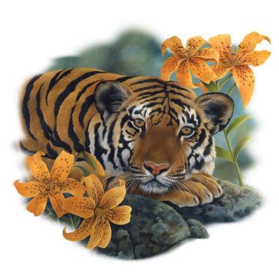 Tiger Lily New T Shirt, S M L XL 2X 3X 4X 5X