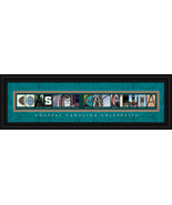 Coastal Carolina University Chanticleers 8 x 24... - $38.50