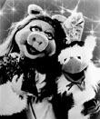 Muppetsmpgroup3msn