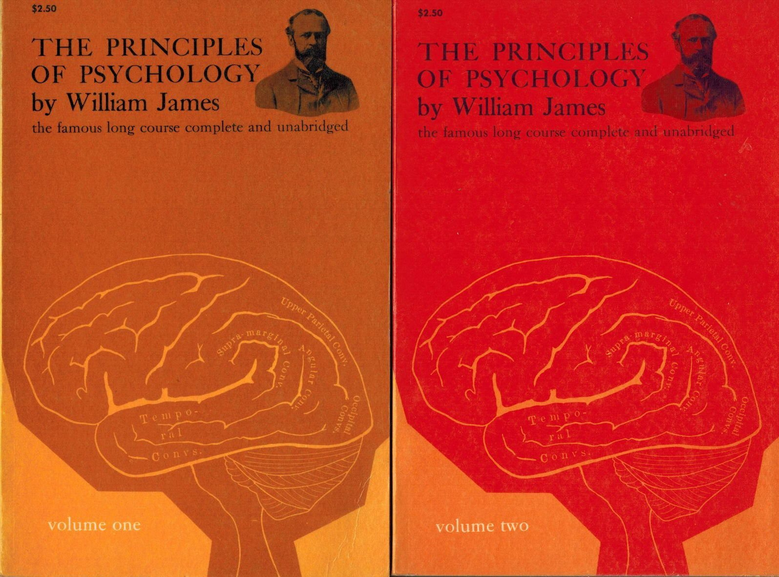 The Principles of Psychology:The famous long course complete and unabridged Two