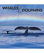Whales and Dolphins 2012 Wall Calendar DateMaker - $14.70