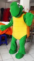 Turtle Mascot Costume Adult Costume - $299.00