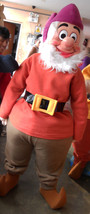 Dwarf Mascot Costume Adult Costume 002 - $299.00