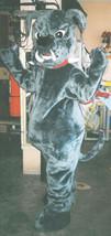 Bull Dog Mascot Costume Adult Bull Dog Costume For Sale - $299.00