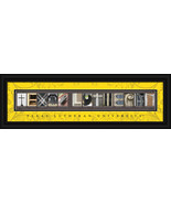 Texas Lutheran University 8 x 24 Framed Campus ... - $38.50