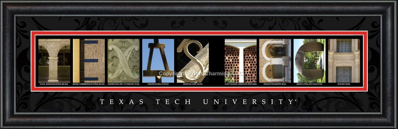 Texas Tech University Red Raiders 8 x 24 Framed Campus Letter Art Print