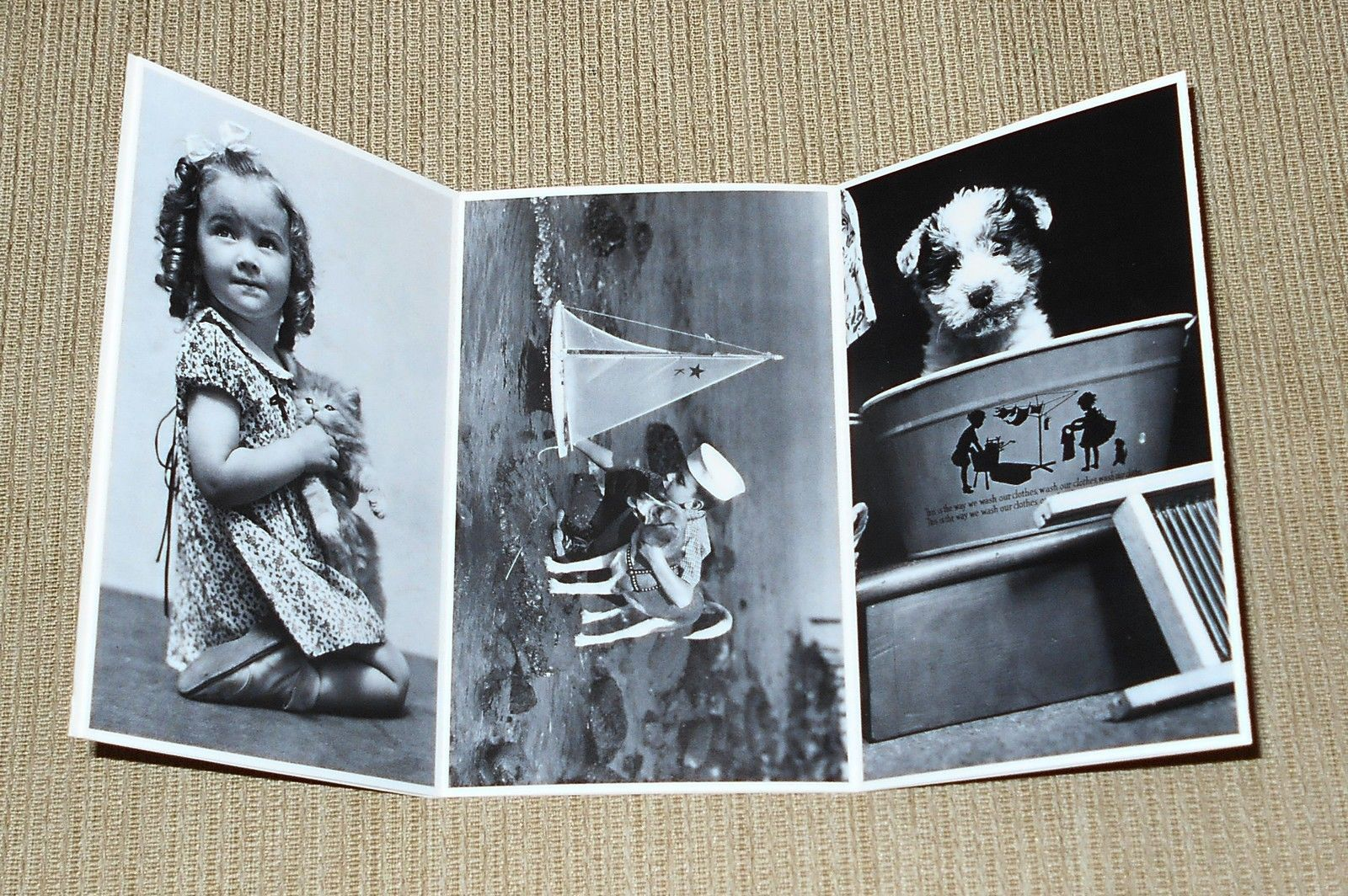 Set/6 North Shore Animal League Postcards Children w/Dogs & Cats - Armstrong B&W