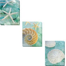 An item in the Art category: Seaglass 1 thru 3 by Alan Blaustein 3-pc Gallery-Wrapped Canvas Giclee Art Set