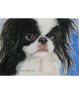 Japanese Chin Dog Art Pastel Drawing Solomon Framed - $165.00