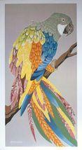 Oherline - Parrot - 91x46cms, vintage parrot poster, McCaw print - $41.00